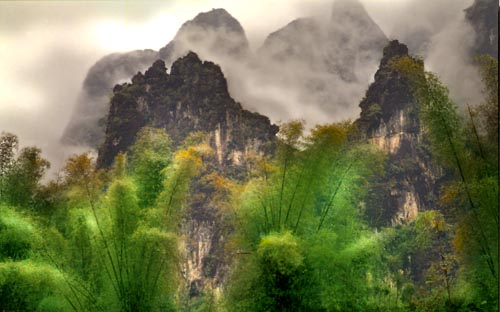 Karst Formations and Bamboo -Southern China